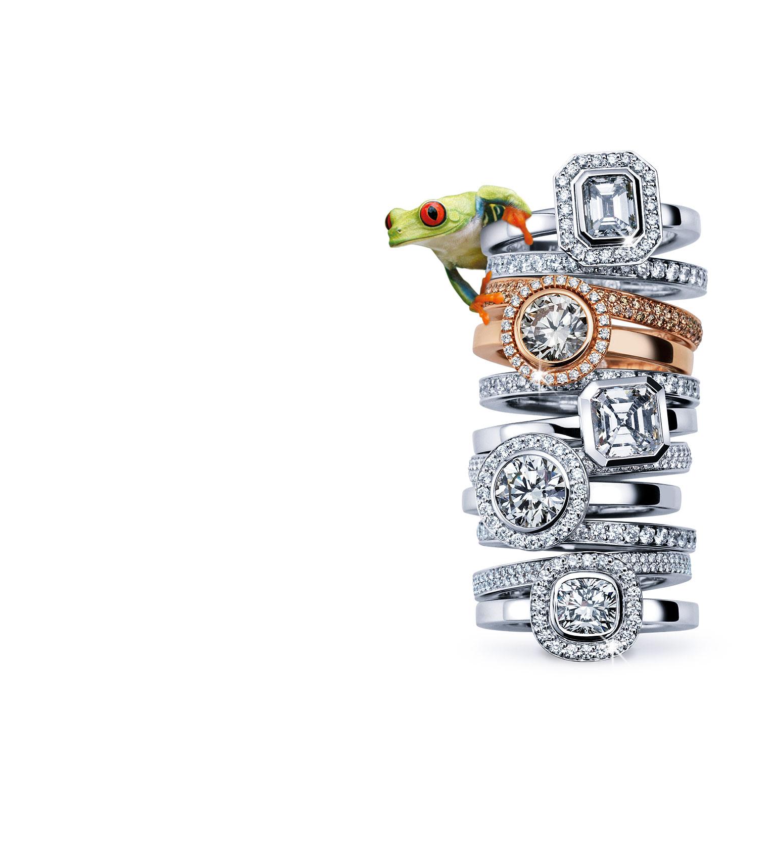 noor-by-wurster-diamonds_1538-x-1680px_Frosch
