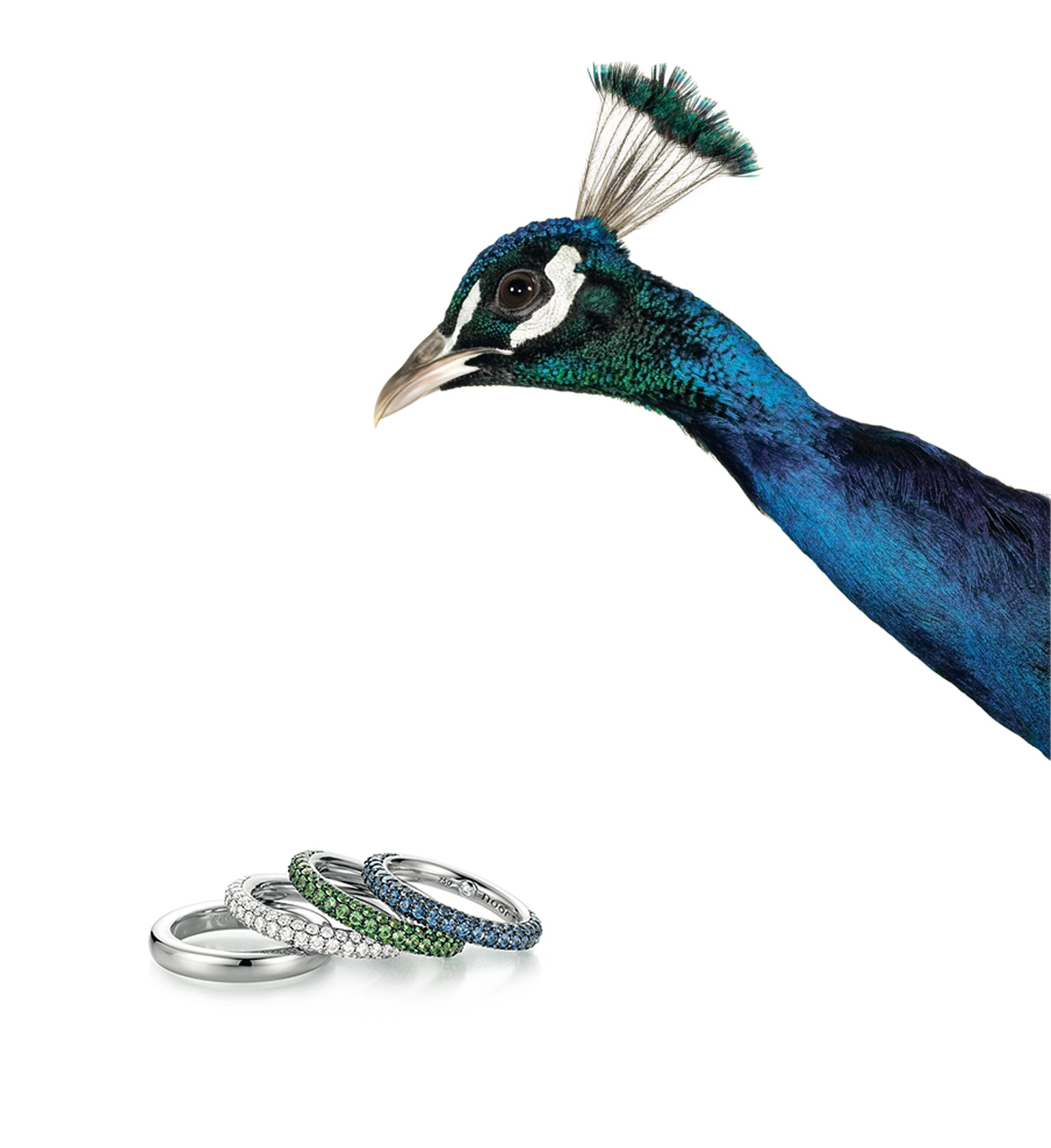 noor-by-wurster-diamonds_Pfau